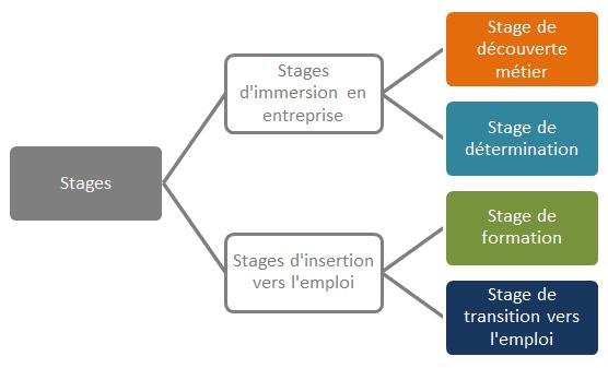 Fiche 4 quels sont les diff rents types de stage for Stage creation entreprise chambre des metiers